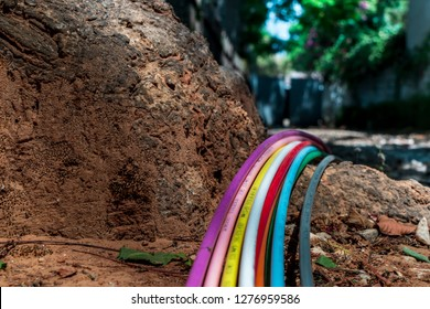 Roots of a tree with multiple internet cables in various colours