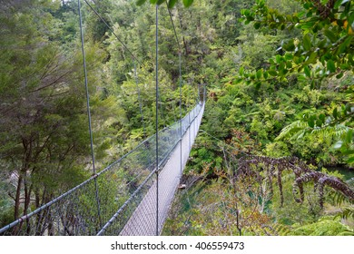 Rope bridge for pedestrians in the green jungle of Abel Tasman National Park on the southern island of New Zealand