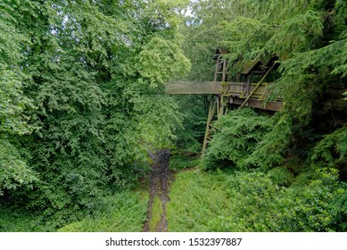Rope bridge to the tree house at Alnwick Gardens, Northumberland - United Kingdom. 8th of August 2019