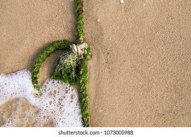 A rope knot on the shore
