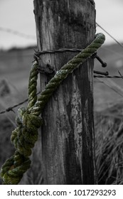 the rope at the post