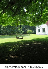 Rope Swing in shaded Garden lawn in Southern Denmark