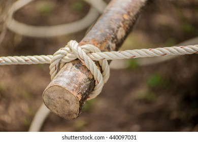 Rope, tie a knot in a tree camp.