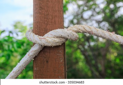 rope tied wood pole in nature