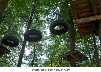 Ropes course in the forest in the trees