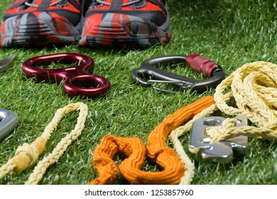 ropes with devices for insurance are on the background of a green lawn