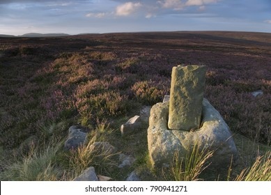 Roppa Cross North on Helsmley Moor at sunset in August, in the North York Moors National Park, Yorkshire, UK