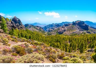Roque Nublo peak, Gran Canaria mountain landscape. View above. Canary Island. Spain.
