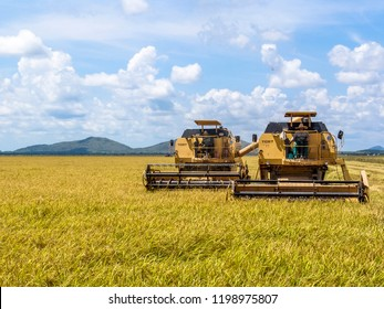 Roraima, Brazil, August 27, 2004. combines harvester harvesting rice on a bright day, in north of Brazil