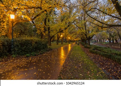 Rosalind Park, Bendigo, Illuminated park path in autumn