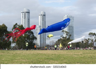 ROSARIO, ARGENTINA - SEPTEMBER 20, 2015: The XV international festival of kites in the Scalabrini Ortiz park on september 20, 2015 in Rosario city, Argentina.