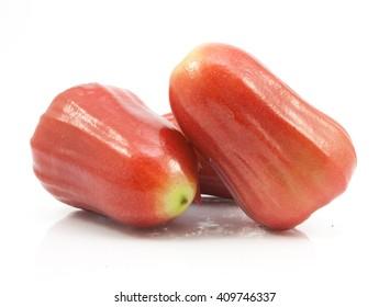 rose apple isolated on white background
