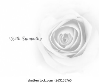 Rose in black and white high-key tone with text expressing sympathy for the death (loss) and for funeral card