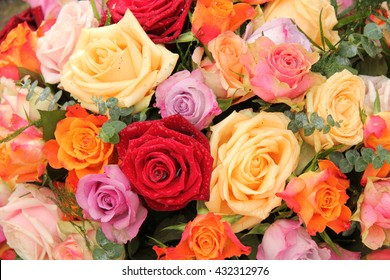 Rose bouquet in various bright and pastel colors after a rain shower