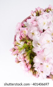 Rose Colored Ceramic Bowl with Light Pink Cherry Blossoms on White Background