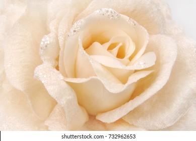 rose fabric beige texture