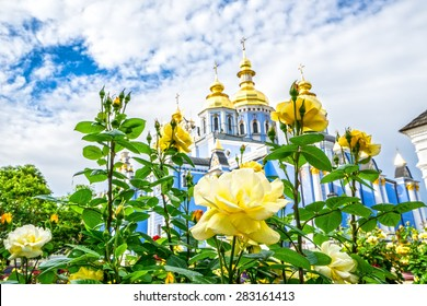 Rose garden at the St. Michael cathedral yard. Kyiv, Ukraine.