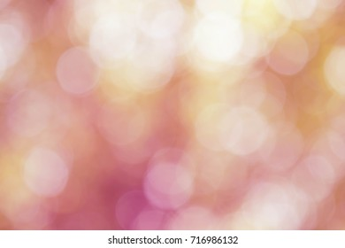 Fond Rose Images Stock Photos Vectors Shutterstock