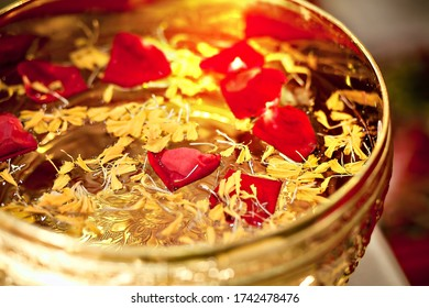 A rose in a golden bowl