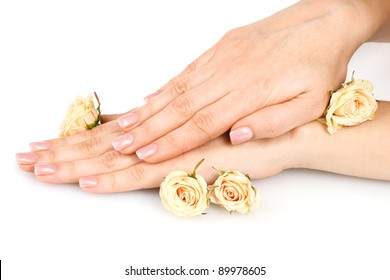 Rose and hands isolated on white