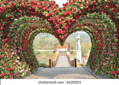 Rose heart shape door.