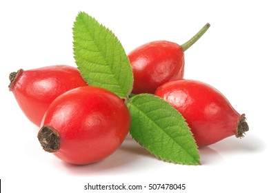 rose hip berry with leaf isolated on white background