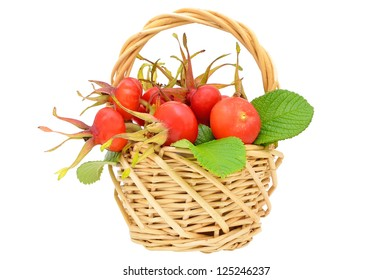 Rose hips in the wicker basket isolated on white background