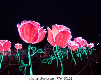 Rose lanterns, part of Beauty and the Beast installation at Festival of Light, Longleat