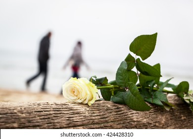 Rose lying on broken tree on the beach. A couple walking in the background. Concept of romantic love, romance, but may also symbolize a loss, melancholy, memory of the past etc.