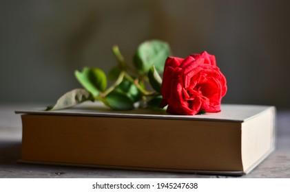a rose on a romantic book