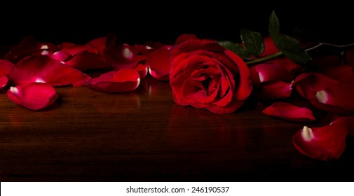 Rose on wood floor background. Give rose to darling in valentine's day. or send love to marry.