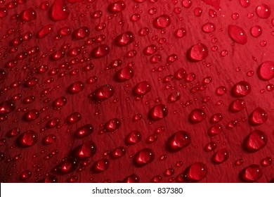 rose petal droplets - macro of water droplets on a red rose petal, shallow depth of field