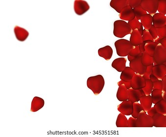 Rose petals background on white. Beautiful deep red roses petal with space for text. Romantic and sweet Valentine's Day background. Trendy and elegant flowers wallpaper perfect for party invitation.