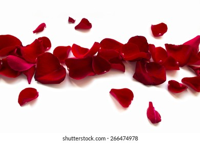 Rose Petals Border, isolated on white background