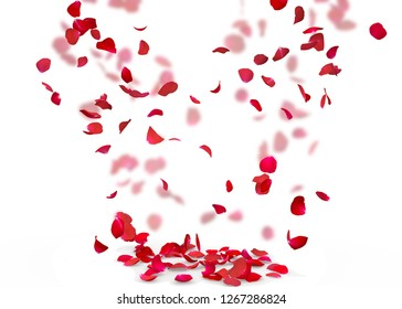 Rose petals fall to the floor. Isolated background. On a blurred background of rose petals