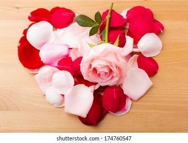 Rose and petals in heart shape