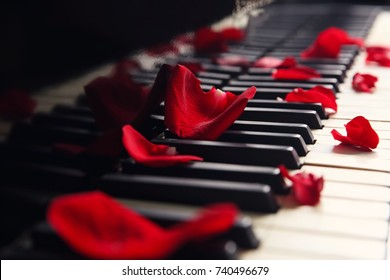 Rose petals on piano keys