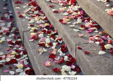 The rose petals on the staircase during wedding