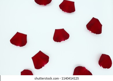 Rose petals, white background