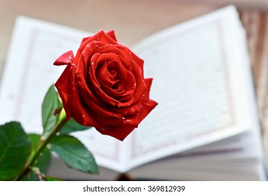 Rose and Quran, the holy book of Islam