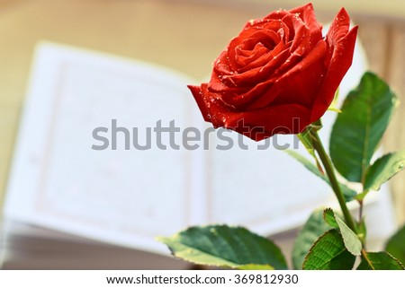 Rose Quran Holy Book Islam Stock Photo Edit Now 369812930
