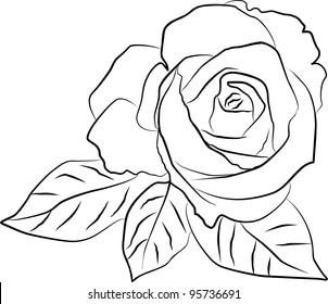 rose silhouette - freehand on a white background