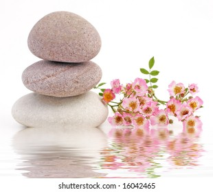 rose and stones pink with water reflection