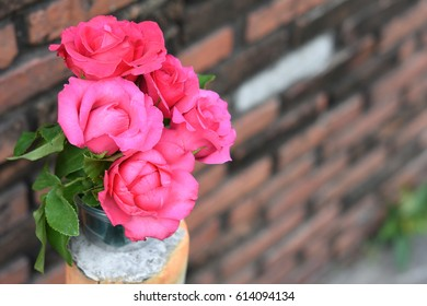 Rose in a vase with a brick wall in the background.