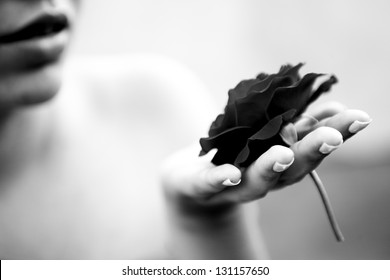 Rose in a woman hand