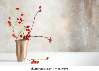 Rosehip branches in a stoneware vase on a white table in front of a vintage wall, natural beautiful autumn or christmas decoration with copy space