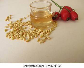 Rosehip essential oil made from wild dogrose seeds