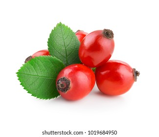 Rosehip isolated on a white background