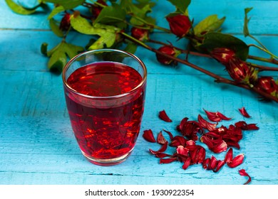 Roselle tea or Hibiscus sabdariffa juice in transparent glass and fresh roselle on blue wooden background. Drink herbal water for health care.