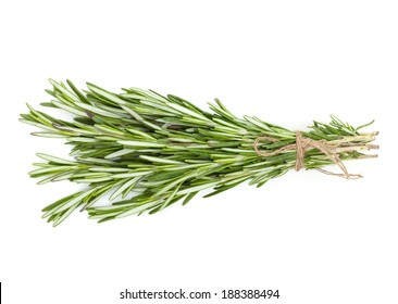 Rosemary bunch. Isolated on white background